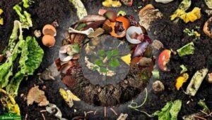 Atık, çürük, kabuk, talaş, kompost alım | satım