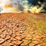 Kurak topraklar, fazla gübreleme