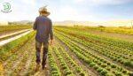 TEKNOFEST'te tarım teknolojileri