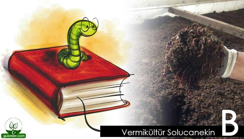 Vermikültür Solucanekin B