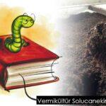 Vermikültür Solucanekin C-Ç