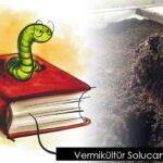 Vermikültür Solucanekin D