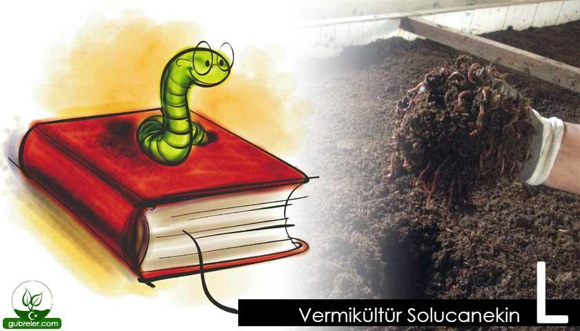 Vermikültür Solucanekin L