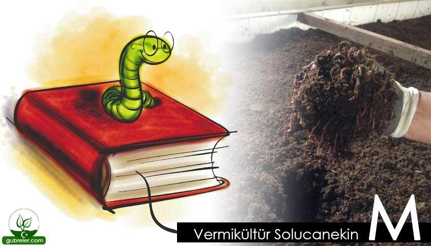 Vermikültür Solucanekin M
