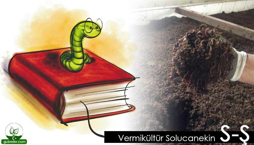 Vermikültür Solucanekin S-Ş